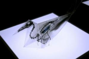 Origami Tembus Pandang Yang Luar Biasa Karya Mahasiswa Jepang [ www.Up2Det.com ]